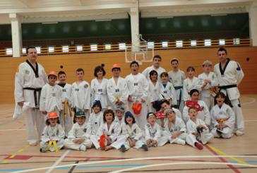 Trobada de taekwondo a Sarral