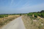 Neteja i desbrossada dels camins municipals més transitats