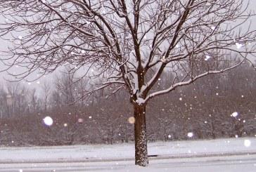 Protecció Civil de la Generalitat activa l'alerta del Pla NEUCAT davant d'un episodi de nevades generalitzades que arribaran a cotes baixes